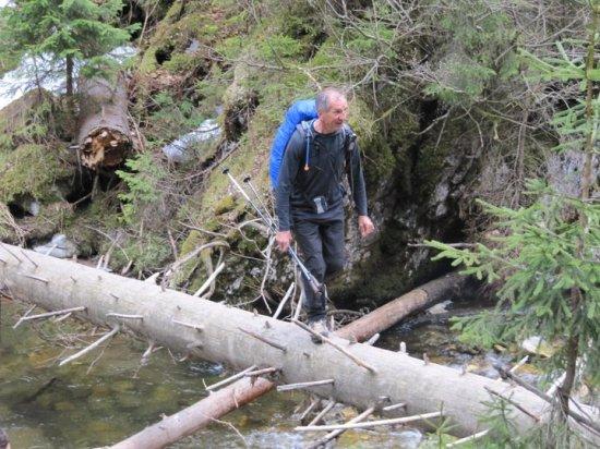 Do vodopada Virciorog potrebno je i ovako prelaziti vodene prepreke