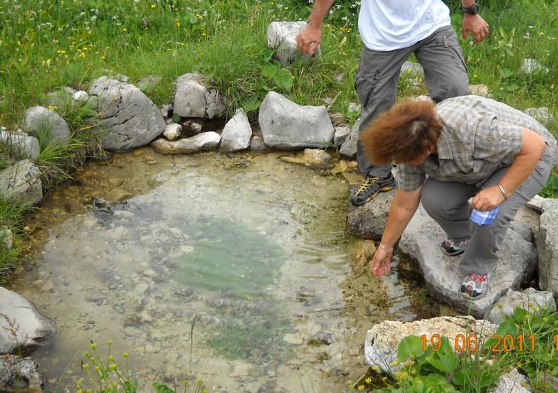 Bulinovo vrelo - pitka voda