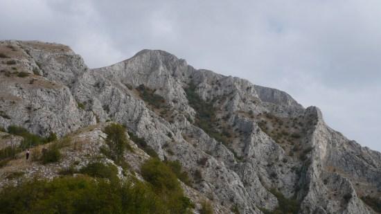 vrh Kozjak