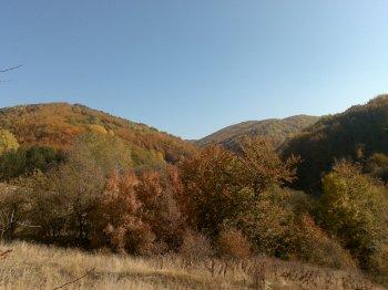 stari putevi ka manastiru Sukovo su isli ovuda, uglavnom konjima