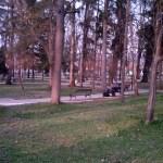 Sokobanja - park