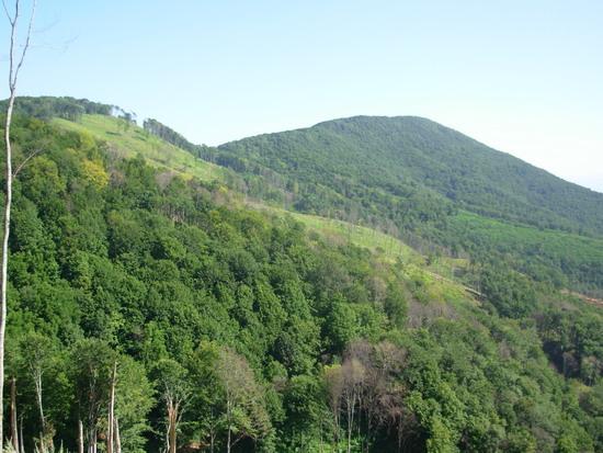 Vrh Juhora (Veliki Vetren 775 m)