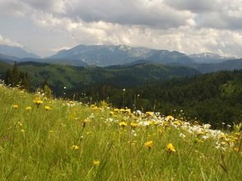 Pogled na Rugovo