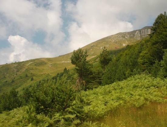Pogled od Solila na Čardak