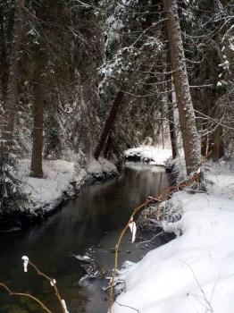 Reka Bjesnica