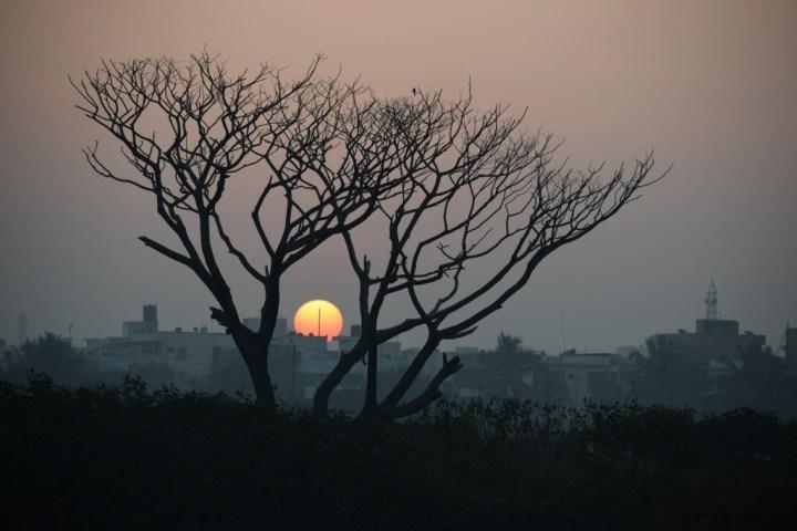 Photo by Srinivasan Venkataraman on Unsplash