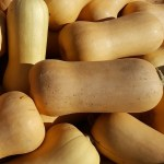 Waltham Butternut Squash - St. Clare Heirloom Seeds