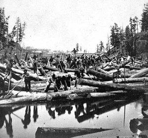 St. Croix River log jam