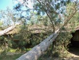 Storm damage to dining hall at St. John's Landing in St. Croix State Park