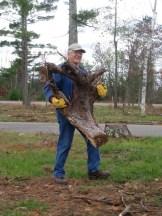 Citizen steward Jim Mallman clearing a stump at Riverside Landing on Friday 10/14.