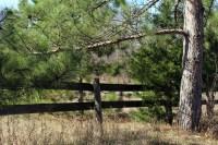 Fairy Falls fence