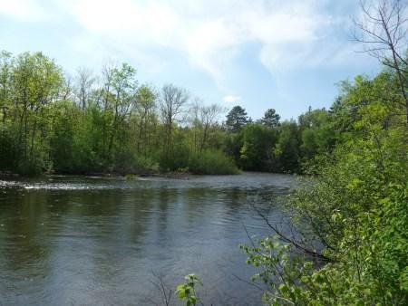 The Namekagon River at Springbrook Wayside.
