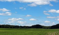 Field and sky, Marine on St. Croix