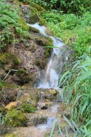 St. Croix River spring
