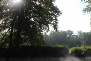 Morning sun through the trees on the St. Croix River