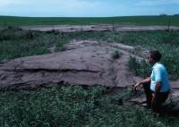 Sediment from farm fields fills a road ditch.