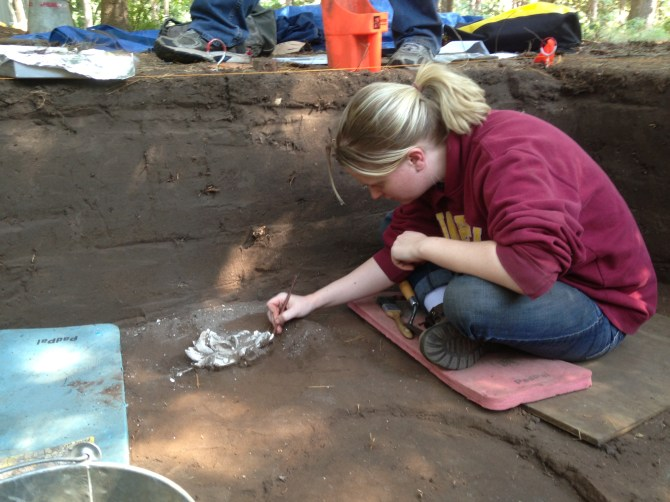 Mary McLaughlin, Archaeology Research Assistant at the Science Museum of Minnesota, excavates a cluster of shells at the Sheffield Site.