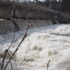 Watch: Roaring River Videos