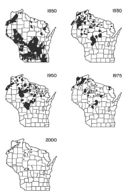 Decline of sharp-tailed grouse in Wisconsin (WI DNR)