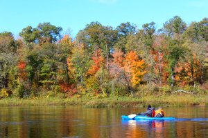 Kayaking and canoeing in the fall colors on the St. Croix River