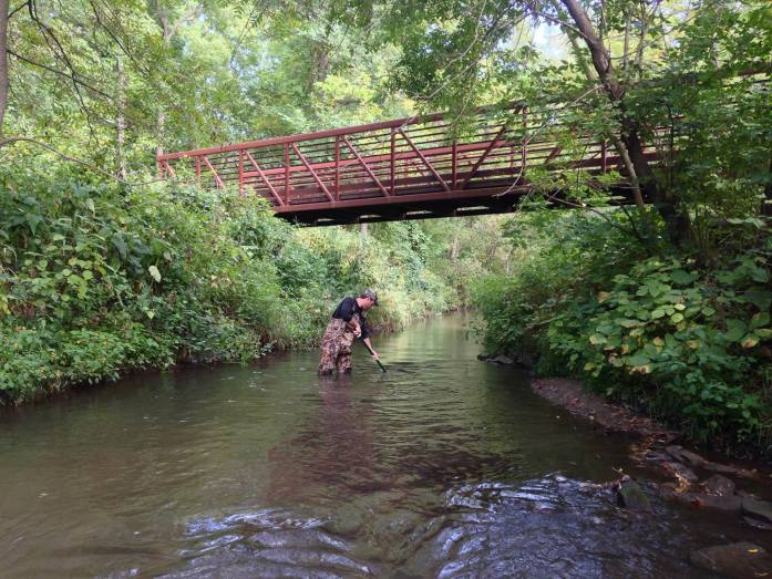 A volunteer at the 2015 AIS Bridge Snapshot Day sweeps a net through a stream. (Photo courtesy River Alliance of Wisconsin)