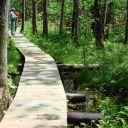 Outdoor events will celebrate 50th anniversary of landmark conservation legislation