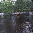 High water on the St. Croix after headwaters hit by torrential rain, flash flooding