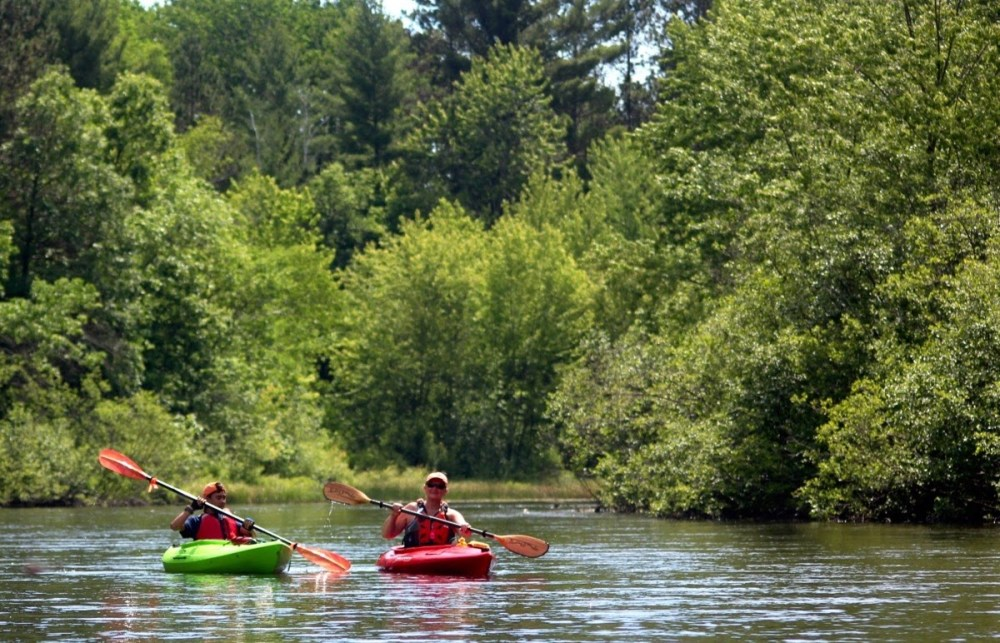 Two people in kayaks paddle down a river surrounded by lush green vegetation.