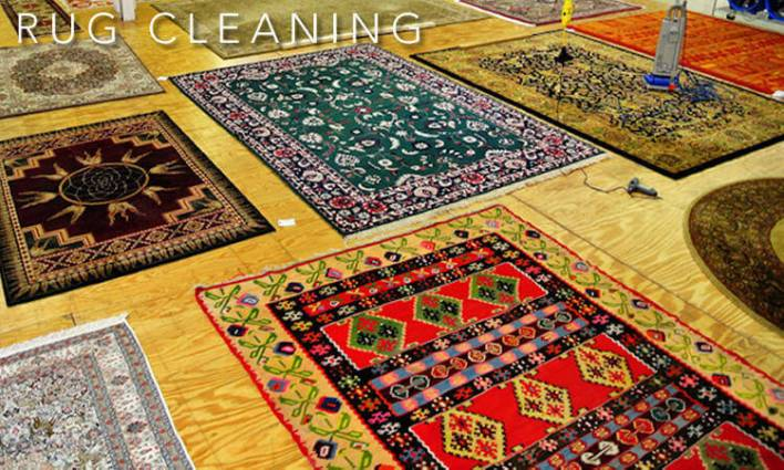 Carpet Cleaning Bloomington Illinois Www