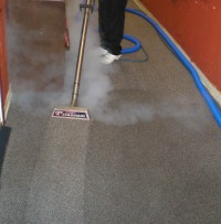 Area Carpet Cleaning Service, Wool Carpet, Professional