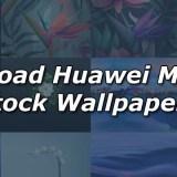 Download Huawei Mate 10 Stock Wallpapers