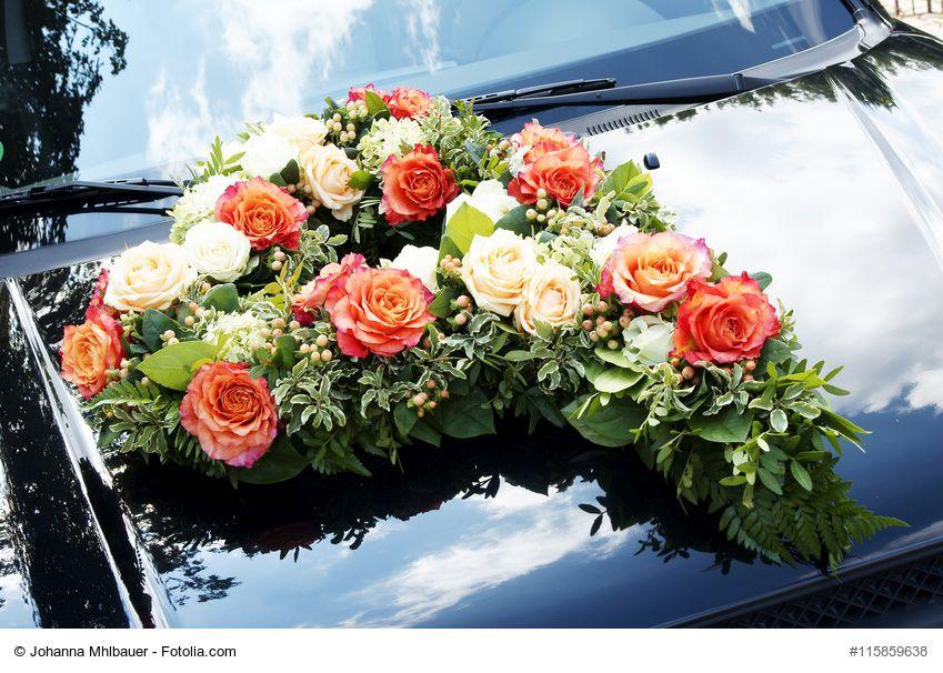 Steckschaum kaufen  Steckmasse fr BlumenGestecke