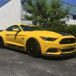 Steeda's New S550 Ultralite Extreme Lowering Springs Are Here!