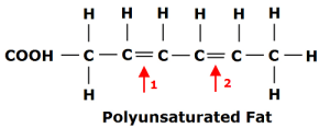 Polyunsaturated-Fat