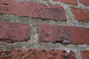 A child's footprint found in the bricks on the Stagville Slave Dwelling Chimney.
