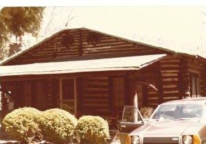 scan log cabin (2)