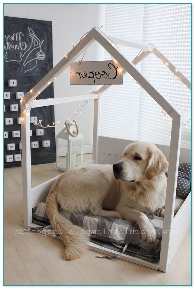 Gorgeous Best Medium Sized Dog Beds