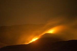 Wildfire Forest Fire Fire Bush Fire  - elliskj / Pixabay
