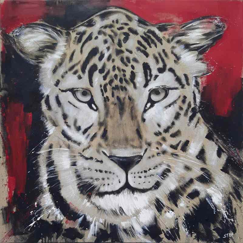 Leopard von Stefanie Rogge