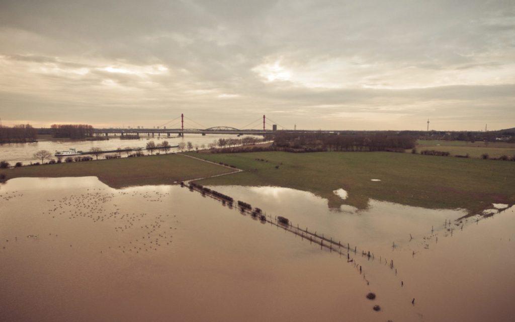 Rhein-Hochwasser Januar 2018 in Duisburg-Baerl