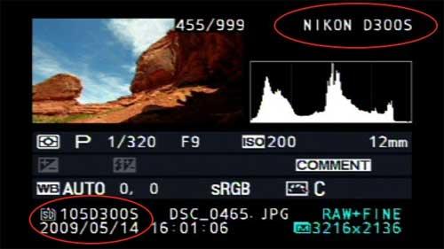 nikon_d300s_lcd-screen-rumour