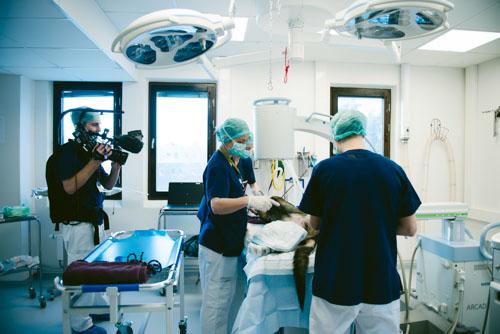 Foto under operation. Fotograf Stefan Tell