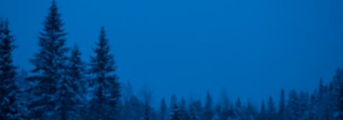 testbild-vitbalans-tungsten-glödlampa-för-CTO-3000-Kelvin