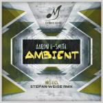 Ambient (Stefan Weise Remix)