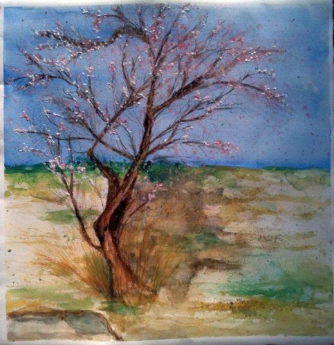 Spanish Landscape Almond Blossom watercolour