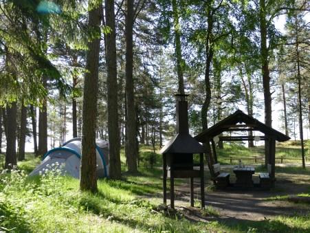 RMK Campingplatz im Wald