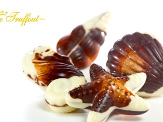 Pralinen Schokolade