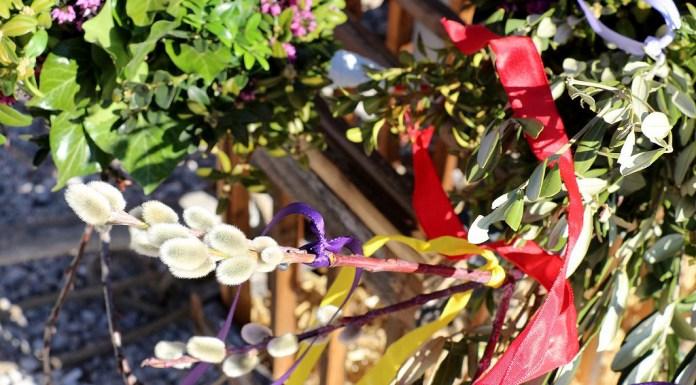 Mieminger Bäuerinnen zeigten wie's geht: Palmbuschen selber binden, Foto: Mieming-Online/Knut Kuckel