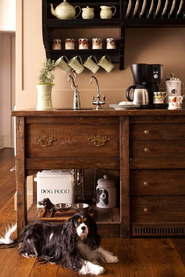 catelus și un dulap de lemn