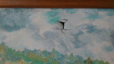 pictura din Baia Mare